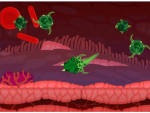 Enemy Within: Antibodies, or anti-your-body?